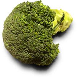 Zajímavosti - brokolice