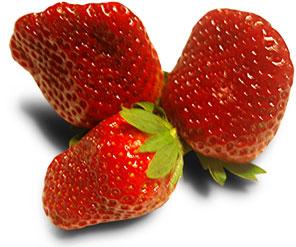 Zajímavosti - jahody