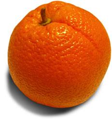 Zajímavosti - pomeranče